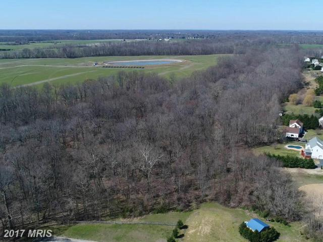 Goldfinch Lane, Centreville, MD 21617 (#QA9853600) :: Pearson Smith Realty