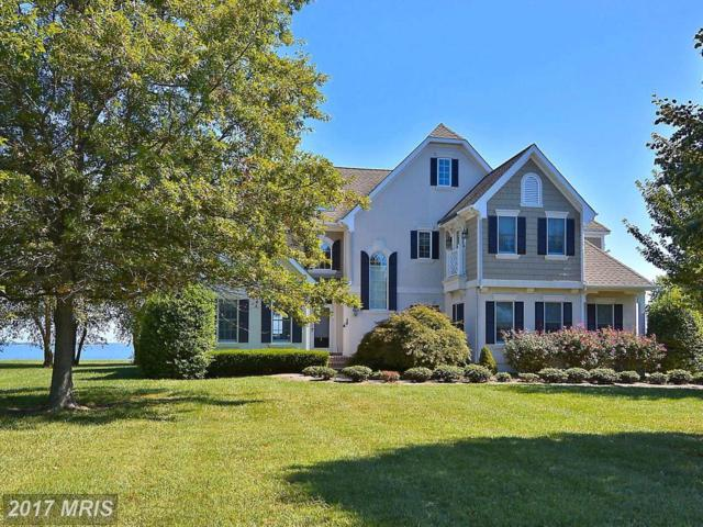 2813 Cox Neck Road, Chester, MD 21619 (#QA9871813) :: Pearson Smith Realty