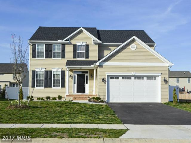 167 Meadow Brook Way, Centreville, MD 21617 (#QA9913128) :: Pearson Smith Realty
