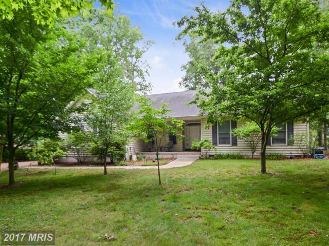 225 Atkinson Drive, Millington, MD 21651 (#QA9958024) :: Pearson Smith Realty