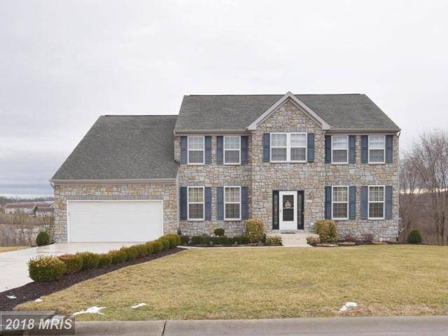 247 Harding Drive, Broadway, VA 22815 (#RO10155771) :: Bob Lucido Team of Keller Williams Integrity