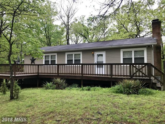 17603 Sundance Forest Road, Broadway, VA 22815 (#RO9946821) :: Pearson Smith Realty