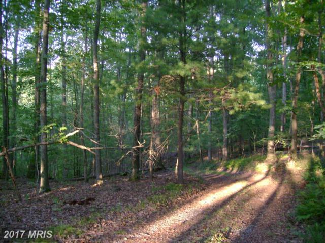 299 Whorton Hollow Road, Castleton, VA 22716 (#RP9707929) :: LoCoMusings