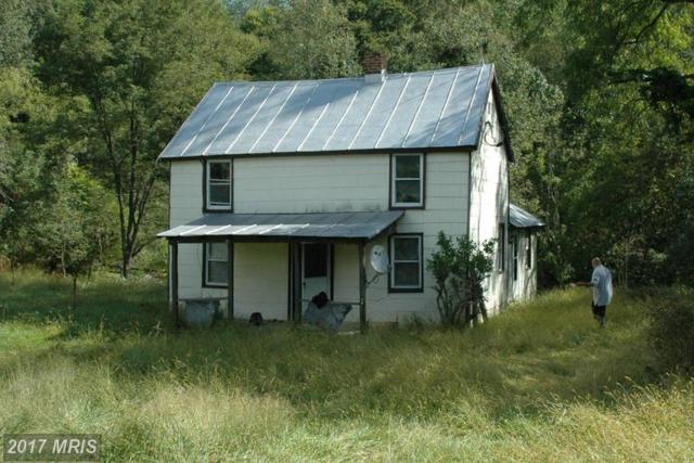 4 Wolf Mountain Lane, Washington, VA 22747 (#RP9784484) :: LoCoMusings