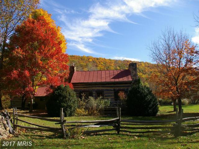 452 Keyser Run Road, Washington, VA 22747 (#RP9929671) :: Pearson Smith Realty