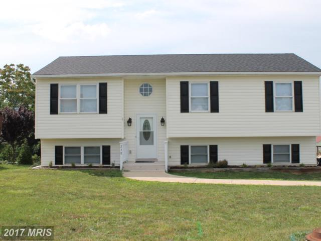 238 Greenleaf Road, Strasburg, VA 22657 (#SH10005779) :: LoCoMusings