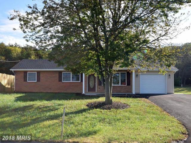 377 Front Royal Road, Strasburg, VA 22657 (#SH10013582) :: Pearson Smith Realty