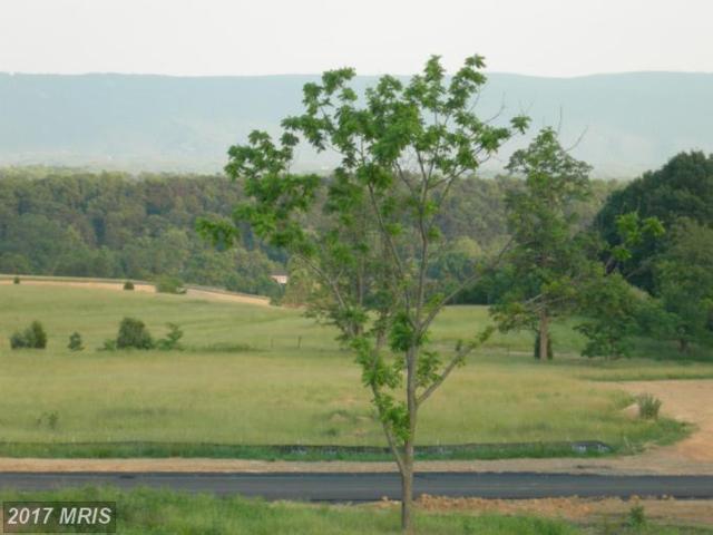 Back Road Lot # 14, Maurertown, VA 22644 (#SH8685359) :: LoCoMusings