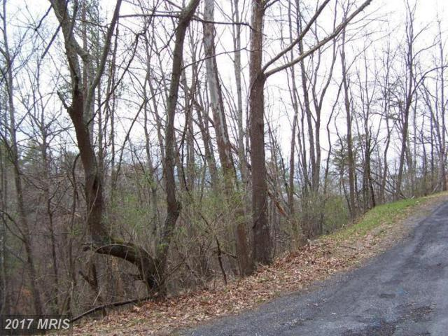 0 Pheasant Drive, Basye, VA 22810 (#SH9590912) :: Pearson Smith Realty