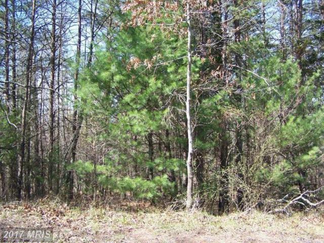0 Sandpiper Drive, Basye, VA 22810 (#SH9591534) :: Pearson Smith Realty