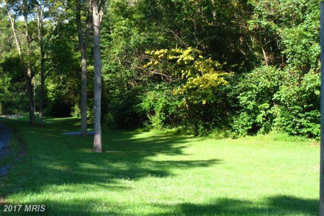 Oak Hill Drive, Woodstock, VA 22664 (#SH9608629) :: LoCoMusings