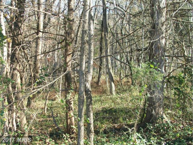 0 Deer Rapids Road, Strasburg, VA 22657 (#SH9814921) :: Pearson Smith Realty