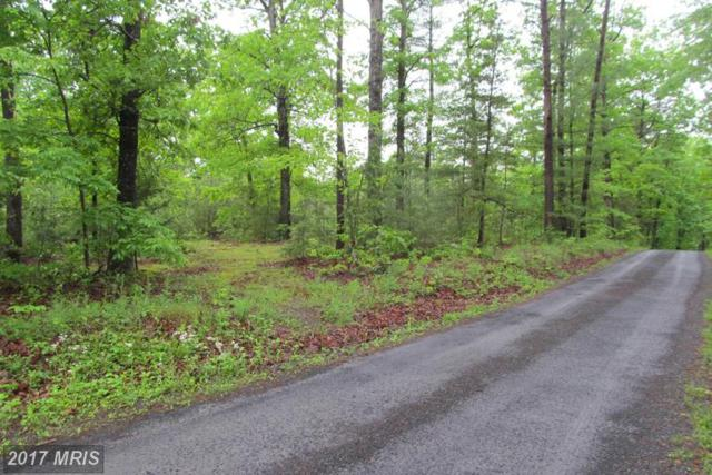 0 Hickory, Mount Jackson, VA 22842 (#SH9942926) :: Pearson Smith Realty