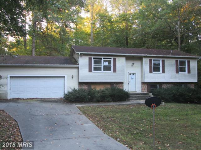 27002 Oxley Drive, Mechanicsville, MD 20659 (#SM10091734) :: Pearson Smith Realty