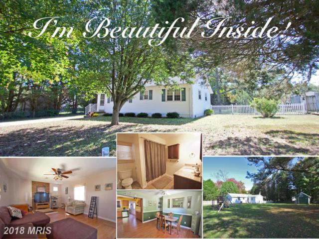 40071 Golden Beach Road, Mechanicsville, MD 20659 (#SM10093417) :: Pearson Smith Realty