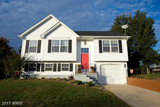 20832 Sunlight Court, Lexington Park, MD 20653 (#SM9811954) :: LoCoMusings
