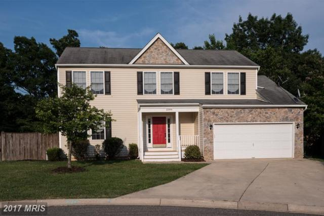 22694 Kinnegad Place, Great Mills, MD 20634 (#SM9929606) :: LoCoMusings