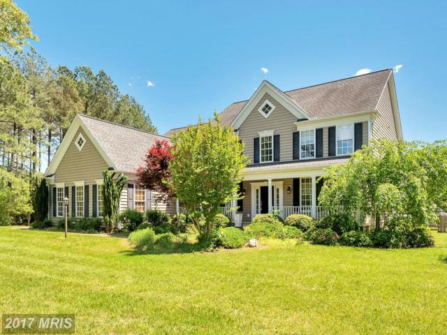 9047 Pine Acres Way, Spotsylvania, VA 22551 (#SP10007661) :: Green Tree Realty