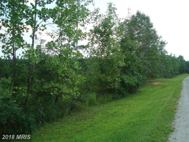 Governors Point Lane, Unionville, VA 22567 (#SP10037764) :: The Gus Anthony Team