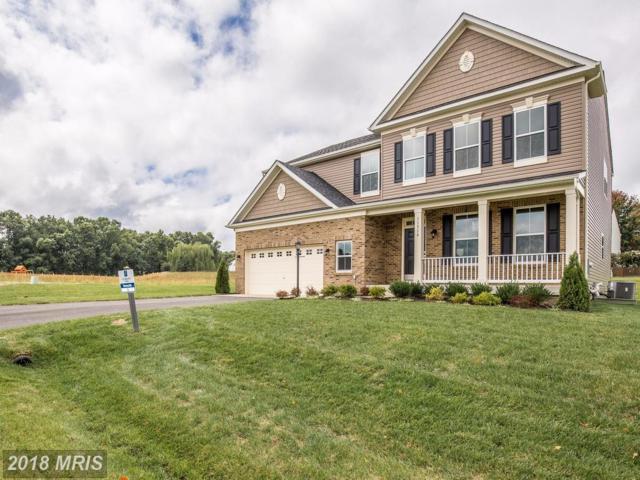 11316 Baron Drive, Fredericksburg, VA 22408 (#SP10058699) :: Pearson Smith Realty