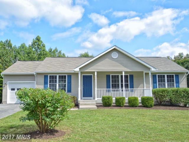 11111 Huntington Meadows Lane, Fredericksburg, VA 22407 (#SP10060377) :: Pearson Smith Realty