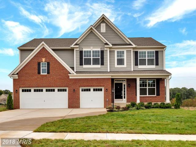 10410 Aspen Highlands Drive, Spotsylvania, VA 22553 (#SP10072612) :: The Gus Anthony Team