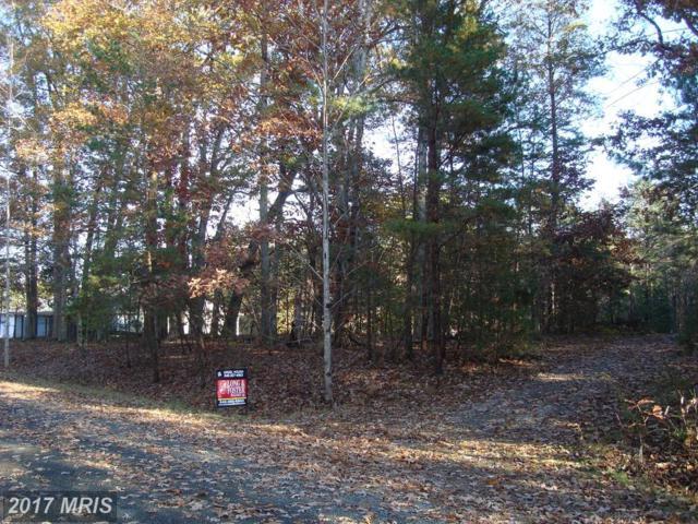 15006 Ridgeview Drive, Mineral, VA 23117 (#SP10099156) :: Pearson Smith Realty
