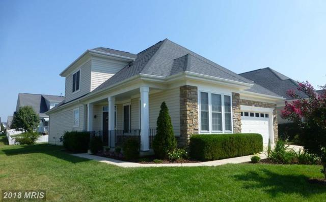 5507 W. Rich Mountain Way W, Fredericksburg, VA 22407 (#SP10099330) :: Keller Williams Pat Hiban Real Estate Group