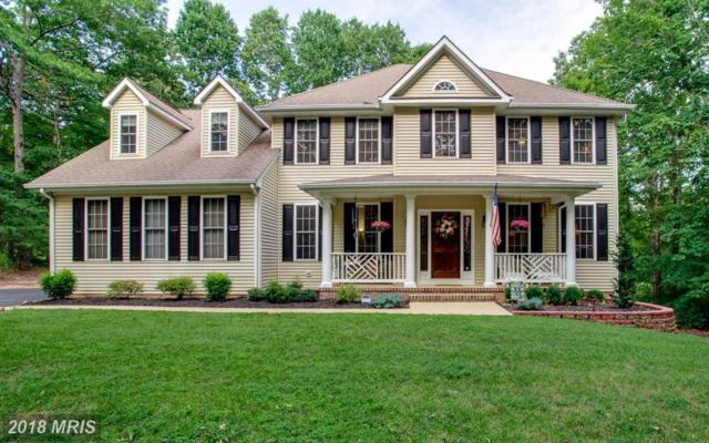 13601 South General Slocum Court, Fredericksburg, VA 22407 (#SP10101696) :: Pearson Smith Realty