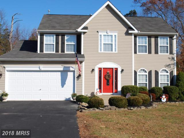 10005 Chesney Drive, Spotsylvania, VA 22553 (#SP10114975) :: The Gus Anthony Team