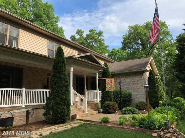 5316 Wyndemere Circle, Mineral, VA 23117 (#SP10196601) :: The Gus Anthony Team