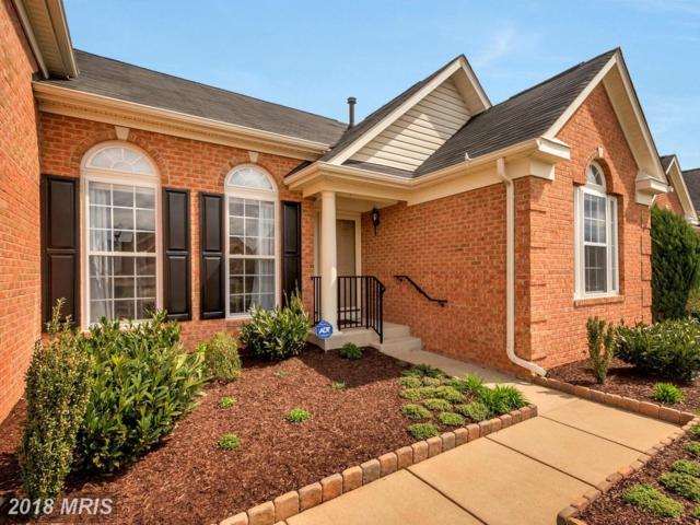 6321 W Dranesville Drive, Fredericksburg, VA 22407 (#SP10228558) :: RE/MAX Gateway
