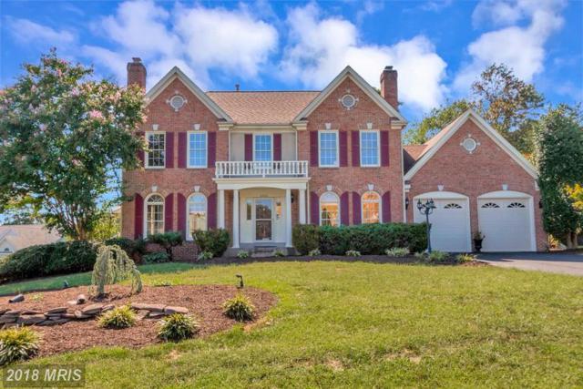 10400 Amherst Circle, Fredericksburg, VA 22408 (#SP10341133) :: Browning Homes Group