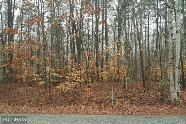 5404 Trimmingham Court, Mineral, VA 23117 (#SP9580858) :: Pearson Smith Realty
