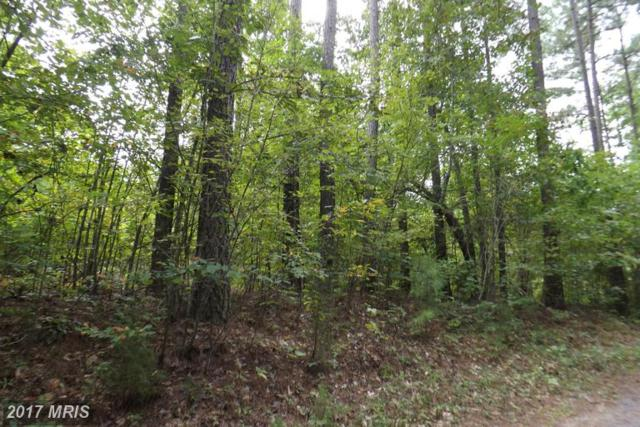 6910 Countryside Lane, Spotsylvania, VA 22551 (#SP9759758) :: LoCoMusings