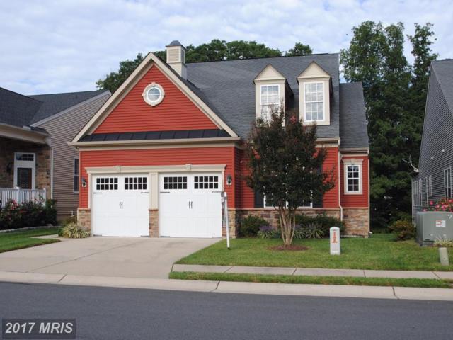 12515 Regiment Lane, Fredericksburg, VA 22407 (#SP9880382) :: LoCoMusings