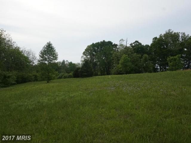 17109 Arrow Point Drive, Orange, VA 22960 (#SP9920166) :: Pearson Smith Realty