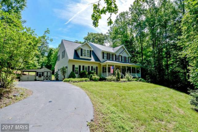 13421 Fox Chase Lane, Spotsylvania, VA 22553 (#SP9939349) :: LoCoMusings