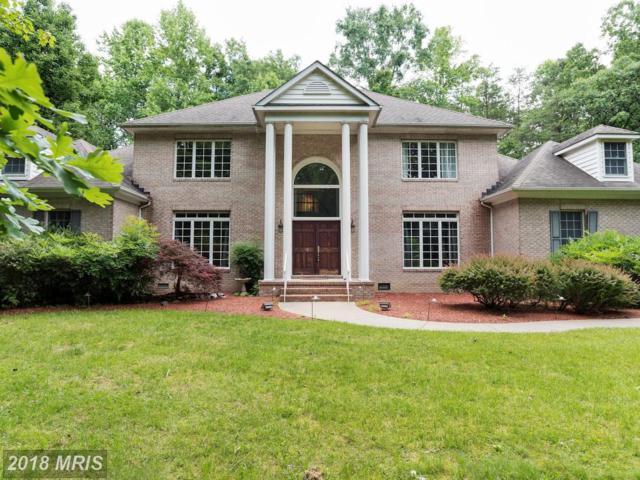 13601 Kalmbacks Mill Drive, Fredericksburg, VA 22407 (#SP9971282) :: Pearson Smith Realty
