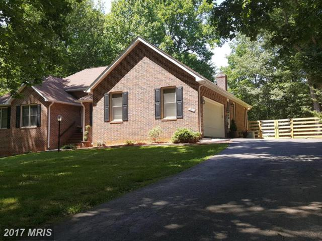 13700 General Geary Court, Fredericksburg, VA 22407 (#SP9974157) :: Pearson Smith Realty