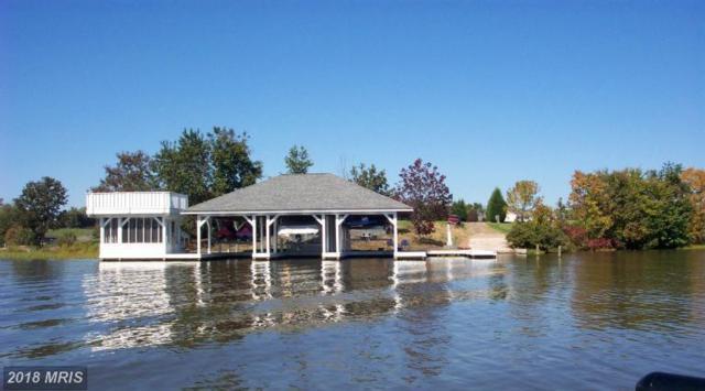 5700 Crescent Point Drive, Orange, VA 22960 (#SP9979576) :: The Bob & Ronna Group