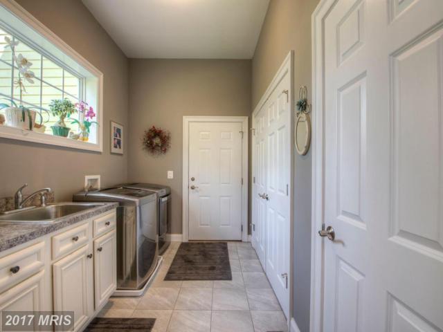 10813 Pinnacle Drive, Spotsylvania, VA 22551 (#SP9993289) :: Green Tree Realty