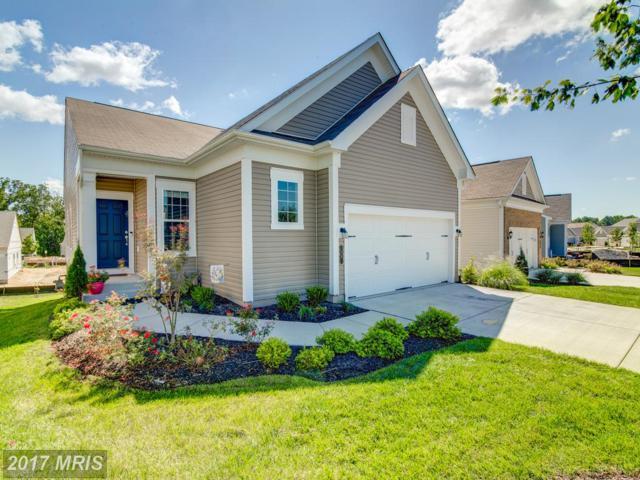 36 Table Bluff Drive, Fredericksburg, VA 22406 (#ST10054131) :: Pearson Smith Realty