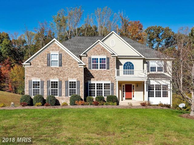 17 Wentworth Drive, Fredericksburg, VA 22406 (#ST10091465) :: Pearson Smith Realty