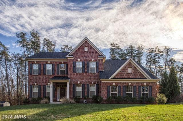 28 Jordan Lane, Fredericksburg, VA 22405 (#ST10118568) :: Pearson Smith Realty