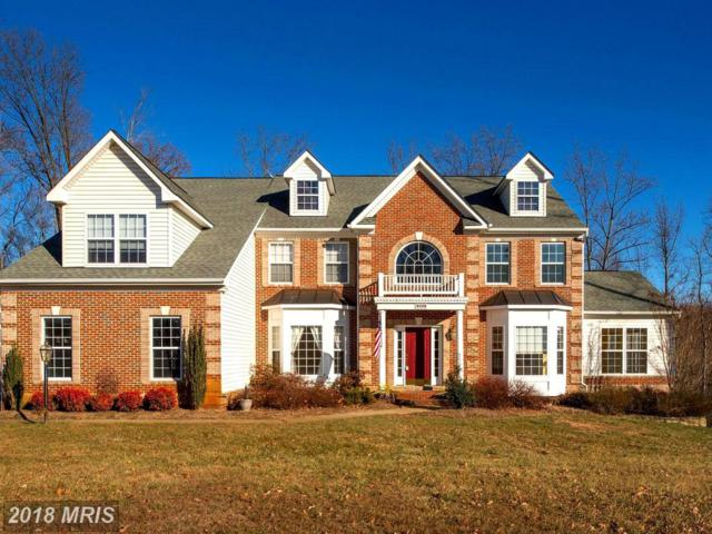 120 Sentinel Ridge Lane, Stafford, VA 22554 (#ST10131214) :: Browning Homes Group