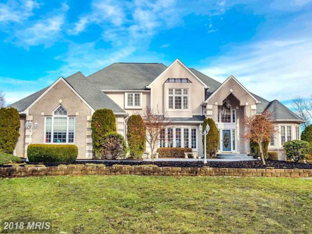 18 Potomac Overlook Lane, Stafford, VA 22554 (#ST10133434) :: The Gus Anthony Team
