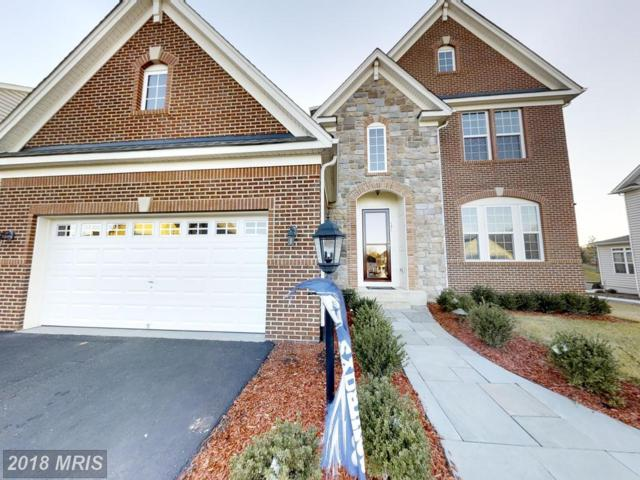 141 Coachman Circle, Stafford, VA 22554 (#ST10137143) :: The Gus Anthony Team