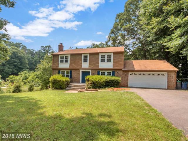 31 Green Leaf Terrace, Stafford, VA 22556 (#ST10202153) :: Bob Lucido Team of Keller Williams Integrity