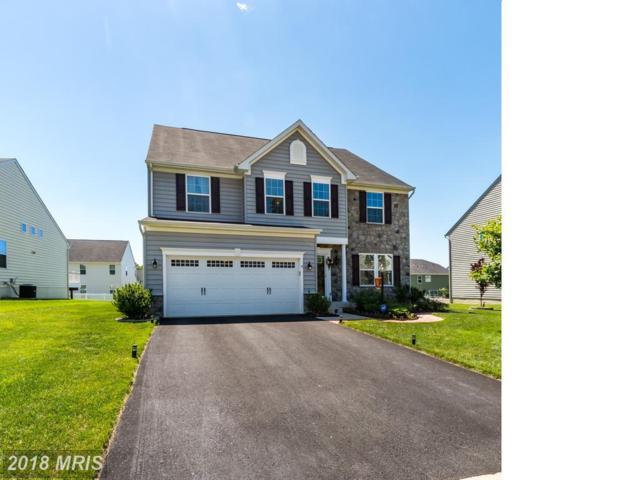 9 Clear Spring Lane, Fredericksburg, VA 22405 (MLS #ST10258813) :: Explore Realty Group